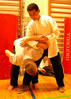 xin yi kungfu qigong wushu
